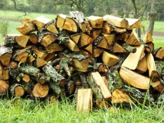 Ausbildung in der Forstwirtschaft / Holzbau