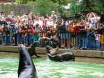 Die Ausbildung als Tierpfleger im Krefelder Zoo (Quelle: Zoo Krefeld)