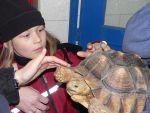 Junge Menschen für Tiere begeistern (Quelle: Zoo Krefeld)