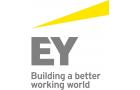 Logo Ausbildungsbetrieb Ernst & Young